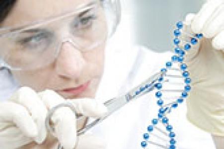 CRISPR/Cas9 CNRGV