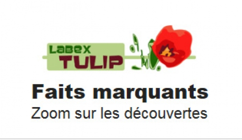 Research highlights on LabEx TULIP website