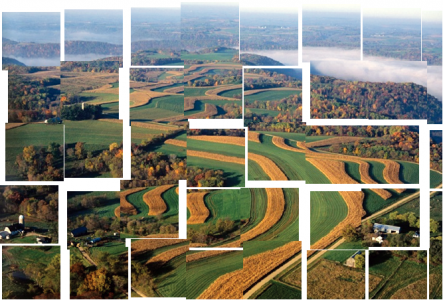 Ecology Letters - Biodiversity and ecosystem stability across scales in metacommunities