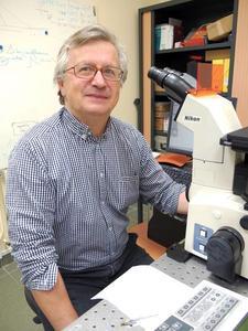 Alain Jauneau