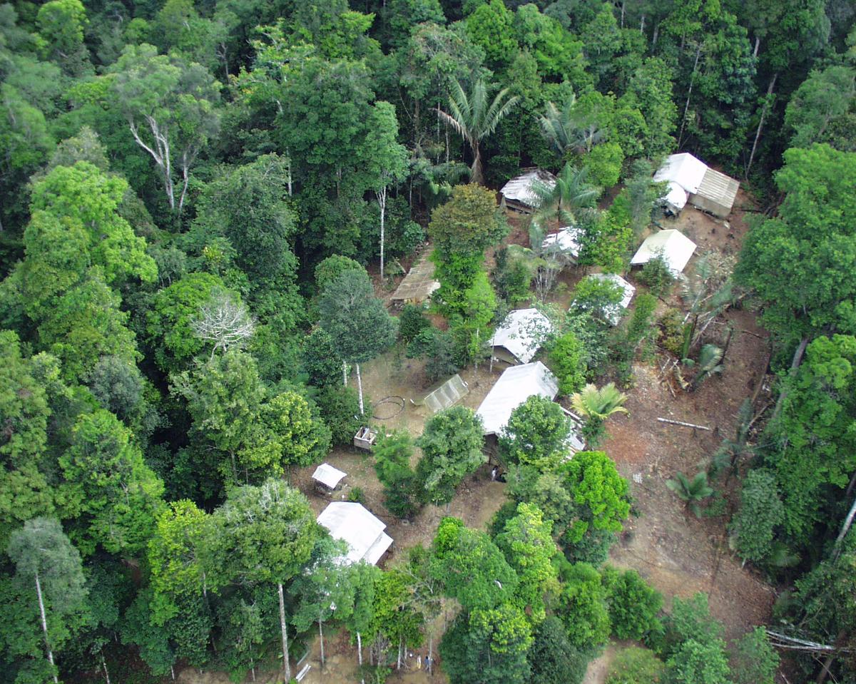 Vue aérienne du camp des Nouragues (site Inselberg), station de recherche en écologie tropicale. P. Charles-Dominique - CNRS
