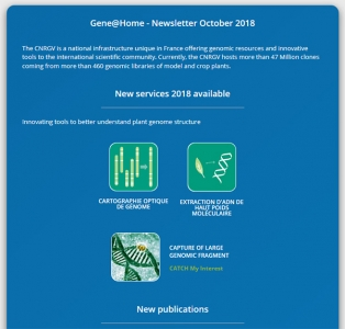 CNRGV - Gene@Home - Newsletter October 2018
